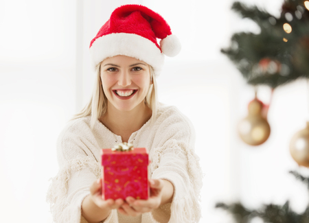 Young, beautiful woman holding a Christmas present Standard-Bild