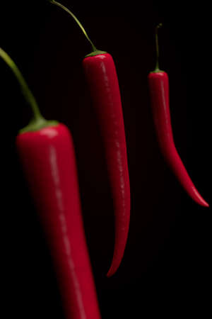 hot peppers: Red hot peppers on black