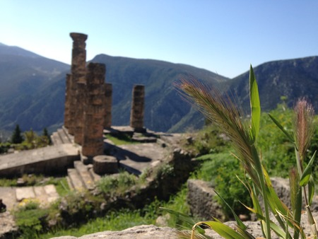 Delphi Holy Land Stock Photo