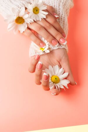 Slender young hands hold flowers, with a thin wrist, clean skin and French manicure. Flat lay photo, with place for text. Zdjęcie Seryjne
