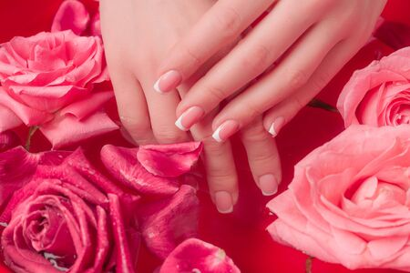Spa Salon: Beautiful Female Hands with French Manicure in the Bowl of Water with Pink Roses and Rose Petals.