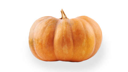 Pumpkin isolated on white background. Medium size. Side view.