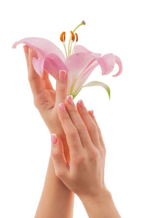 Female hands with french manicure holding a bud of pink lilies isolated on a white background. Hands and nails care concept.