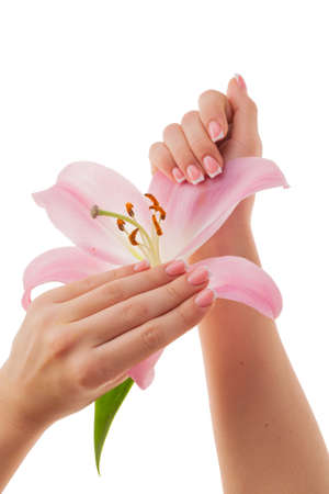 Beautiful French manicure on a background of delicate lily petals, isolated on a white background.
