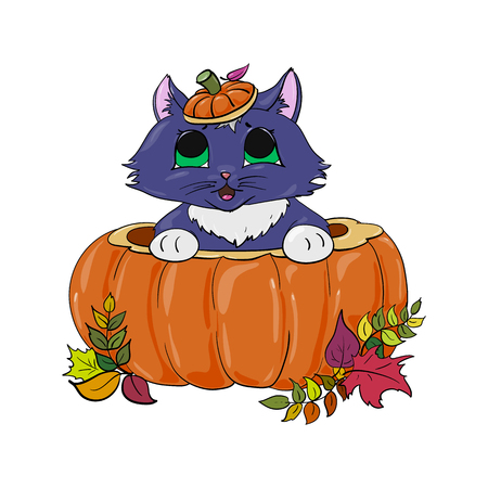 Kitten in a pumpkin childlike Halloween illustration.