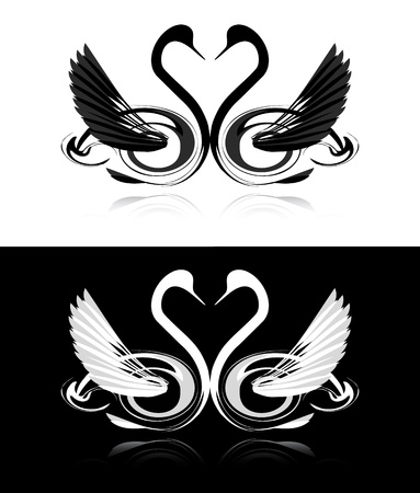Collection of black and white swans Vector