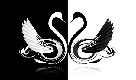 安らぎ: 愛の黒と白の白鳥  イラスト・ベクター素材