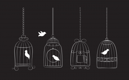 Collection of bird cages with birds isolated on black background Illustration