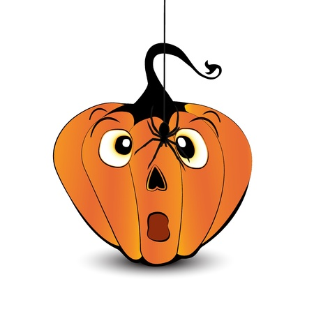 Scared pumpkin face with a spider isolated on white background Stock Vector - 15062793