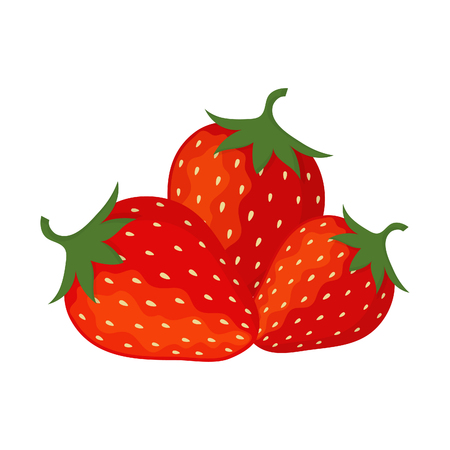 munch: Collection of vector strawberries