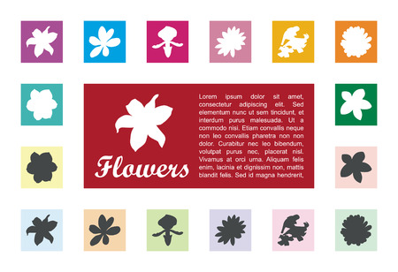 signboard form: Flora icon in square box vector.