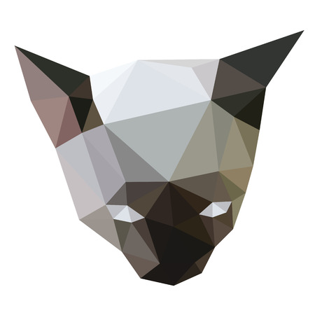 Siamese cat face low polygon vector.