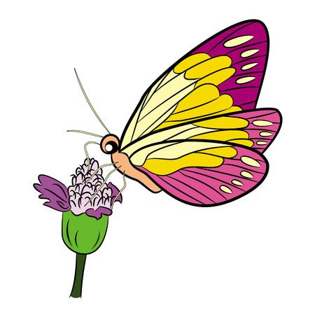 mariposa caricatura: Dibujo animado de la mariposa aislada en blanco Ilustración vectorial Vectores