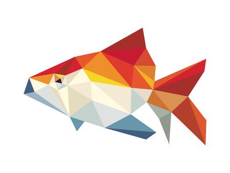 golden fish: Golden fish low polygon vector Illustration