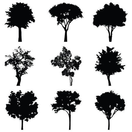 9 つの樹木ベクター シルエットのセット