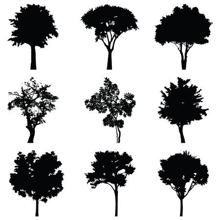 Set di nove alberi vettore silhouette Vettoriali
