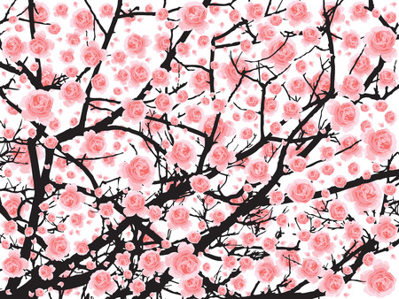 flor de sakura: Plena floración del árbol de sakura flor de cerezo Vectores