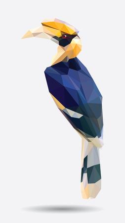 hornbill: Hornbill low polygon Illustration