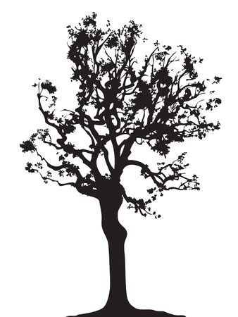 forestation: Tree twig silhouette