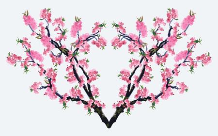 sakura tree: Full bloom sakura tree Cherry blossom