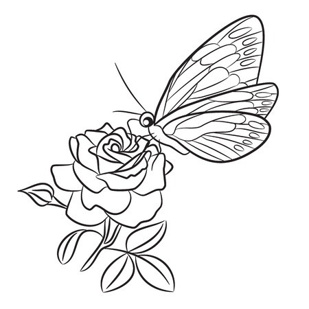 bud: Butterfly on blooming rose, small bud and leaf. Black easy drawing line tattoo.