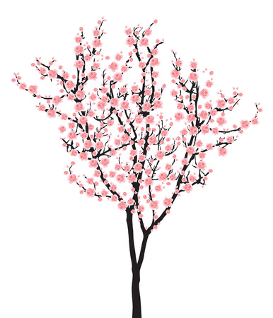 One pink full bloom sakura tree (Cherry blossom) isolated on white background Illustration
