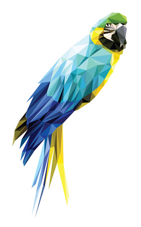 Blue and Yellow Macaw low polygon isolated on white background, colorful parrot bird modern geometric design