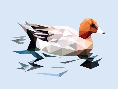ripple: Brown head duck swim on the ripple blue water low polygon style