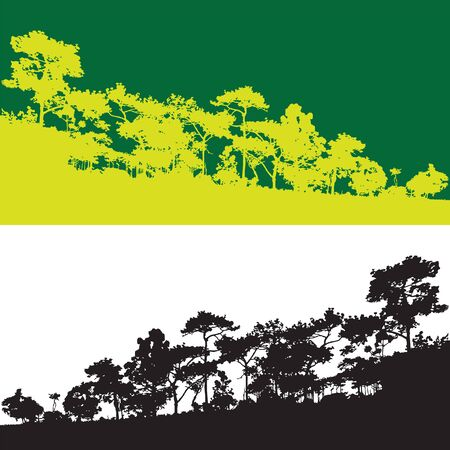 Green pine tree isolated vector banner, branch stick silhouette background, black and white wood view backdrop, forest scene shadow, wild jungle mountain outline