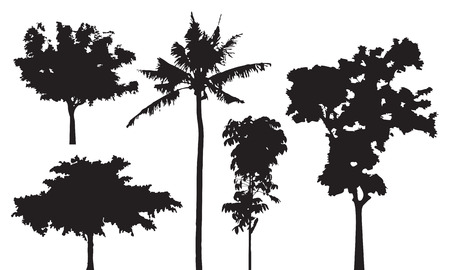 black shadow: Set of five trees silhouette, black shadow forest shape isolated on white