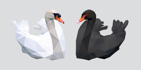 red beak: Black and white swan with red beak low polygon isolated on gray background
