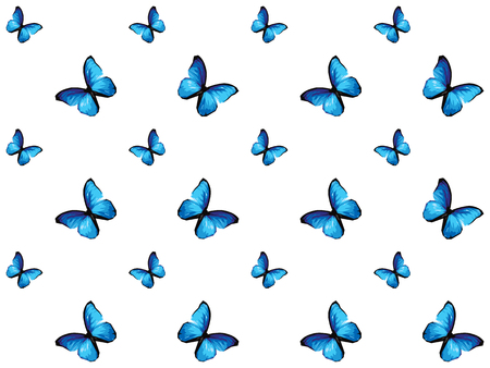 Colorful butterfly isolated on white background, blue wings insects flying. Pattern logo geometric. Bug polygonal crystal style.