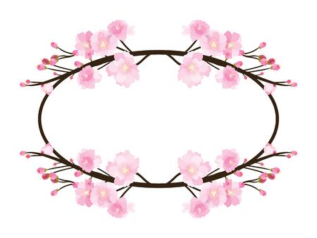 Full bloom sakura flower tree isolated oval border, pink japan flora bush round frame, spring floral circle branch on white background. Treetop of Cherry blossom petal leaf vector. Vektorové ilustrace