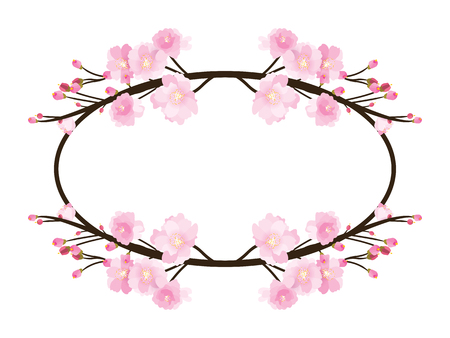 Full bloom sakura flower tree isolated oval border, pink japan flora bush round frame, spring floral circle branch on white background. Treetop of Cherry blossom petal leaf vector. Illustration
