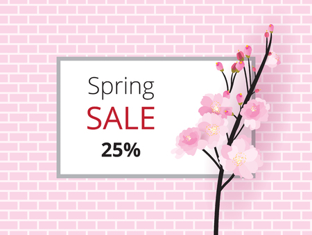 Full bloom sakura flower tree isolated pastel brick wall, pink japan flora bush white frame, spring floral branch on gray border. Treetop of Cherry blossom petal leaf sale poster vector template.