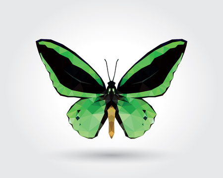 Low polygon butterfly green wings black stripe isolated on white background, fresh verdant insects flying. Logo icon geometric. Bug polygonal crystal style. Ilustração
