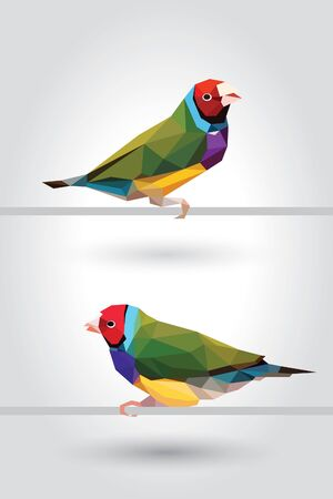 Two Rainbow Finch bird low polygon isolated on gray background, colorful  pet modern geometric icon, Red-headed green wings crystal design illustration. Ilustração