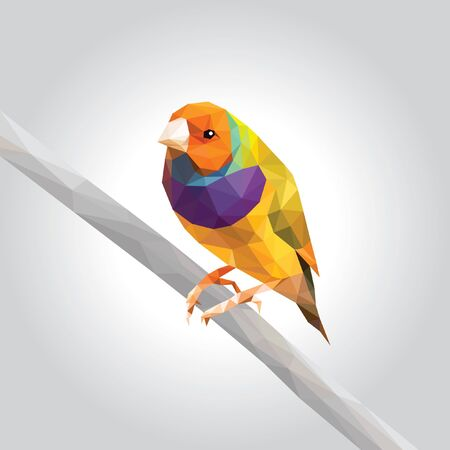 One rainbow finch low polygon isolated on gray background, colorful pet modern geometric icon, orange head green wings bird crystal design illustration.