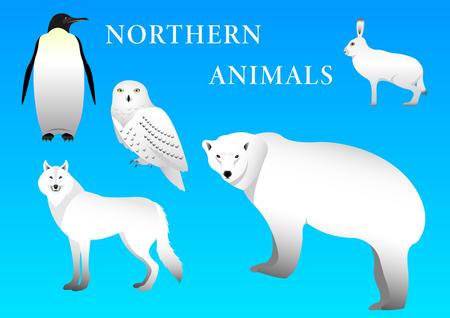 Polar, Northern animals isolated on  blue background. Vector Illustration Stockfoto - 114431644