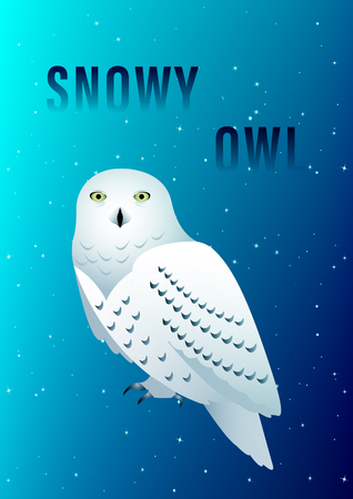 Snowy Owl against the starry sky. Vector Illustration
