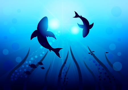 Two big sharks are circling under the water illuminated by sunlight and rays, bottom view with the bottom of the ocean. Realistic Vector Illustration