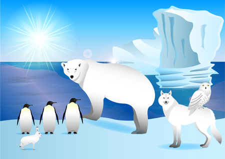 Arctic animals on the shore ocean.  Polar bear, hare, owl,wolf, penguin icebergs in the background. Vector Illustration