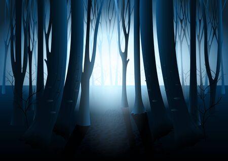 Dunkler mysteriöser Wald, seltsames Licht in paranormaler Landschaft nachts. Die Silhouetten der Bäume gegen den Schein