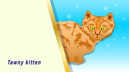 Tawny, Sandy Cat sit and stick out. Kitten with a tribal pattern coat, isolated on a white background, side view. Vector illustration
