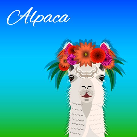The head Alpaca with a floral wreath, front view. Cute bright realistic Vector Illustration Imagens - 128899497