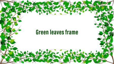Isolated tree branches with green leaves frame. Vector Illustration
