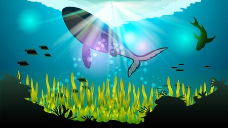 Huge whale, killer whale swimming in the water. Realistic underwater seascape vector illustration. Illustration