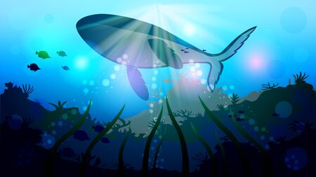 Huge whale, killer whale swimming in the water. Realistic underwater seascape vector illustration. Ilustração