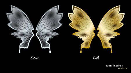 Silver and gold metal butterfly wings with a pattern isolated Vectores