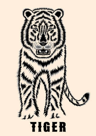 The tiger front view detailed contour vector.
